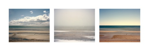 hobler_heather_triptych_11-15
